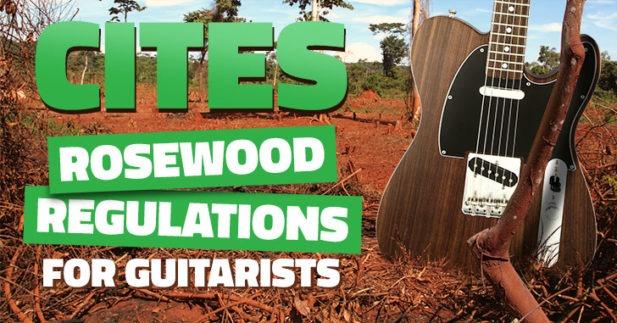 Levantan prohibición CITES sobre Rosewood / Palisandro
