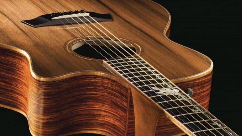 CITES: ya es oficial el fin de prohibición del Rosewood en instrumentos musicales