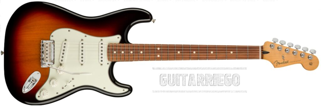 Fender Stratocaster American Standard.  An electric guitar with average weight.