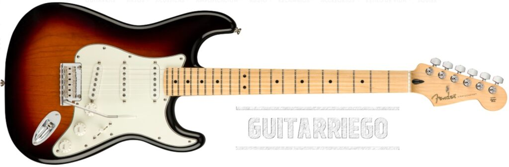Fender Stratocaster Player Series dal Messico