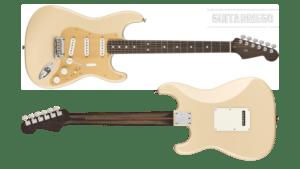 Fender Stratocaster American Professional Rosewood Neck -Mástil Palisandro- edición limitada.