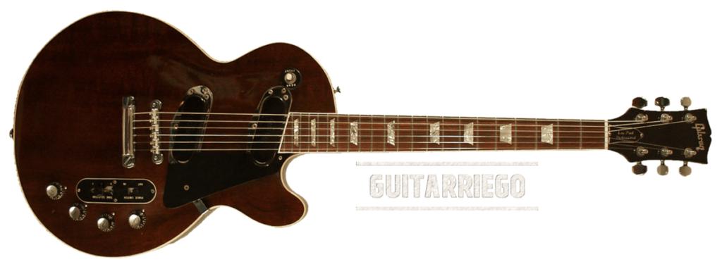 La Gibson Les Paul Professional, seulement 118 unités ont été produites et elle a été commercialisée entre 1969 et 1973.